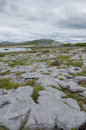 The burren co clare ireland karst landscape of Royalty Free Stock Photo