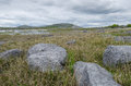 The burren co clare ireland karst landscape of Stock Images