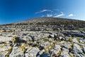 Burren scenery Stock Photography