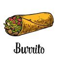 Burrito - mexican traditional food. Vector color vintage engraved illustration for menu, poster, web. Isolated on white background Royalty Free Stock Photo