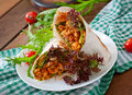Burritos wraps with minced beef and vegetables Royalty Free Stock Photo