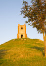 Burrow Mump Somerset Royalty Free Stock Photography