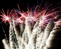Burst of fireworks Royalty Free Stock Photo