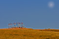 Buryat pillars in field and blue sky Stock Photos