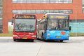 Buses at the railway station assen netherlands Royalty Free Stock Photography