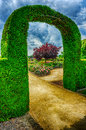 Bush arch in beautiful summer garden at cloudy day Stock Images