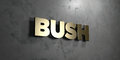 Bush - Gold sign mounted on glossy marble wall - 3D rendered royalty free stock illustration