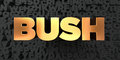 Bush - Gold text on black background - 3D rendered royalty free stock picture