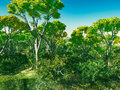 Bush trees in Australia 3d rendering