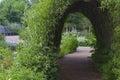 Bush tunnel in a park