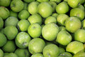 Bushel of green apples a fresh just picked Stock Photos