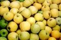 Bushel of Yellow Apples Royalty Free Stock Photo