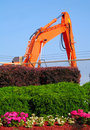 Bushes & Backhoe Stock Photos