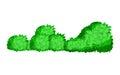 Bushes natural wild image. Elements of natural forest landscapes, flat design illustration. Green bush