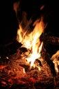 Bushveld Fire Royalty Free Stock Photography