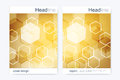 Business brochure design template. Vector flyer layout, abstract golden hexagonal, polygonal background, modern stylish