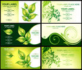Business card with green foliage Stock Photos