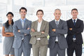 Business colleagues standing in a row the office Royalty Free Stock Image