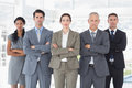 Business colleagues standing in a row the office Royalty Free Stock Photography