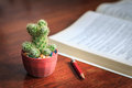 Business concept of cactus pencil and a book on wood background Royalty Free Stock Photo