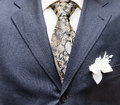 Business formal wear with tie and suit Royalty Free Stock Photo