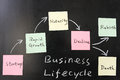 Business lifecycle concept on blackboard Royalty Free Stock Photos
