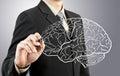 Hombre dibujo hombre cerebro