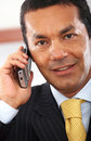 Business man on the phone Royalty Free Stock Image