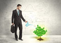 Business man watering a growing green dollar sign tree Royalty Free Stock Photo