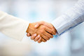 Business people handshaking Royalty Free Stock Photo