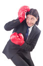 Businessman with boxing gloves on white Stock Image