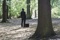 Businessman With Briefcase Standing In Forest Royalty Free Stock Photo