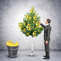 Businessman collecting euro signs from tree Royalty Free Stock Photo