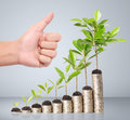 Businessman holding plant sprouting from handful of coins a Stock Photos