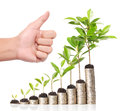 Businessman holding plant sprouting from handful of coins a Royalty Free Stock Photos