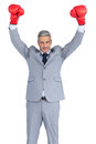 Businessman posing with red boxing gloves hands up on white background Royalty Free Stock Photo