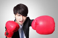 Businessman punching and hitting with boxing gloves Stock Photography