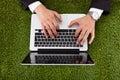 Businessman using laptop on grass Royalty Free Stock Photo