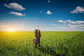 Businessman in a wheat field green Stock Image
