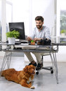 Businessman working at pet friendly workplace young art director handsome bringing his to work while sitting desk in front Royalty Free Stock Image