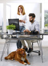 Businessman working at pet friendly workplace young art director handsome bringing his to work while sitting desk in front Stock Photo