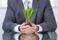 Businessperson with green grass hand holding soil Royalty Free Stock Images