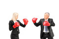 Businesswoman and businessman with boxing gloves having a fight isolated on white background Royalty Free Stock Photos
