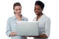 Businesswomen browsing on laptop Royalty Free Stock Photo