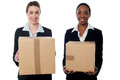 Businesswomen holding packed cartons female executives cardboard boxes Stock Photos