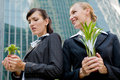 Businesswomen with Plants Royalty Free Stock Photography