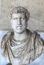 Picture : Bust of Roman emperor Antoninus Pius temple  bush