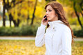 Busy women in autumn beautiful young woman using phone park Stock Photography