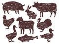 Butcher diagrams. Cutting lines different parts domestic farm animals silhouettes. Outline meat schemes, market menu