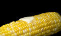 Butter on corn cob Royalty Free Stock Photo